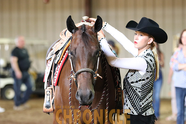 Do You Treat Your Horse Like an Athletic Partner?