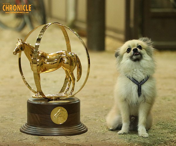 EC Photo of the Day- When Your Trophy is Bigger Than Your Dog…