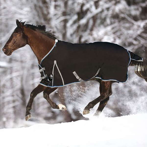 SmartPak Makes Sure Your Horse's Winter Wardrobe is Ready