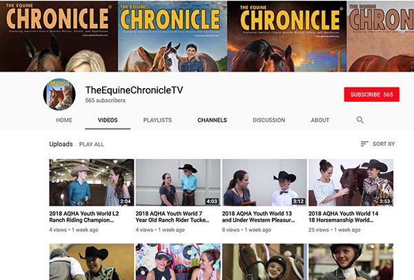 Did You Know Equine Chronicle Has a YouTube Channel?