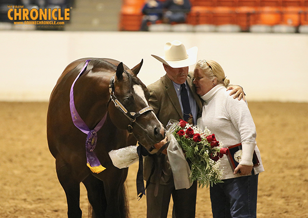 Stratton, Davis, Robertson, Roark, Pait and More Named Congress Champions in Stallion Classes