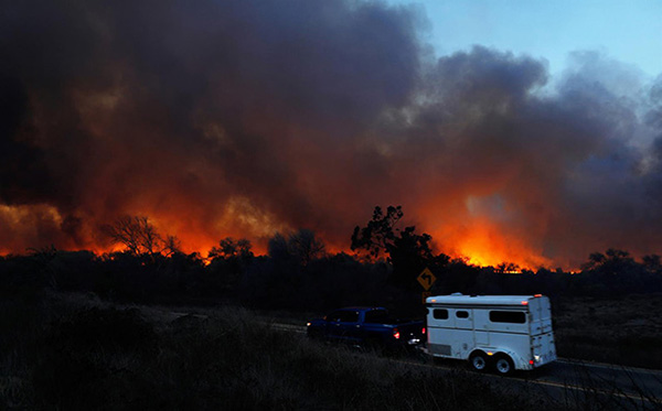 Help Horses Affected by the California Wildfires