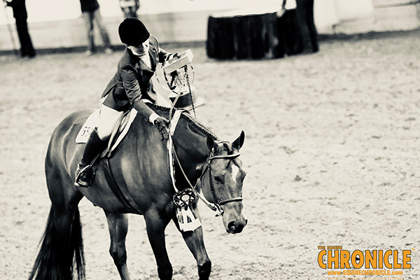 EC Photo of the Day- Love of a Horse