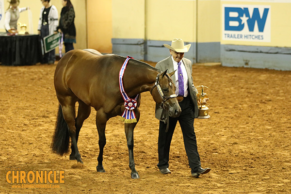 AQHA World Champions Include Turner, Smith, Robertson, and Finkenbinder