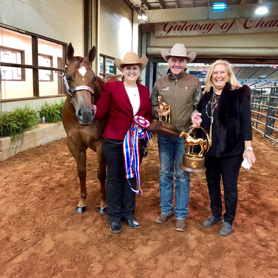 Today's AQHA Halter World Champions Include Weakly, West, Trahan, Fox, Jensen, and Saigo