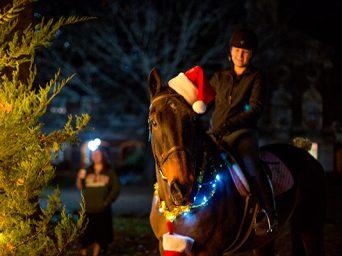 A Very Horseback Christmas Tree Lighting!