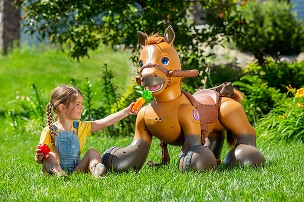 Can't Afford a Pony For Christmas? Toy Designer Has Created the Next Best Thing…