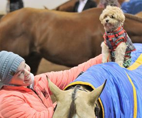 NAVC Offers Support to Veterinary Professionals During COVID-19