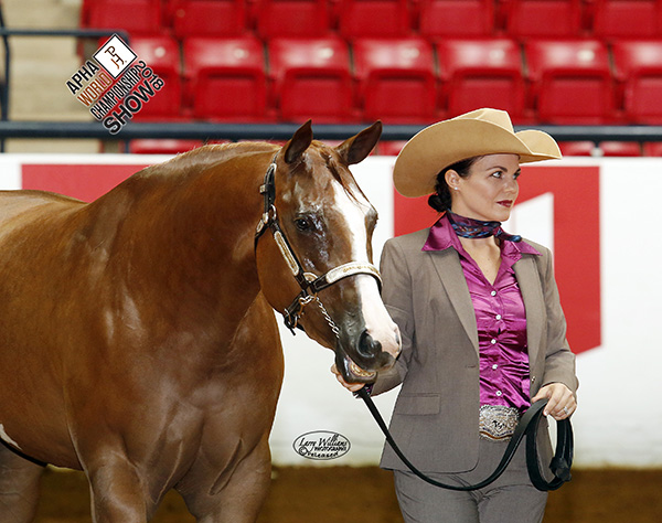 From Kill Pen to World Show Pen- A First Time Trip For Horse and Handler Results in Win