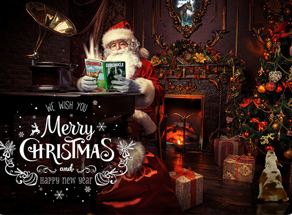 Merry Christmas From The Equine Chronicle!