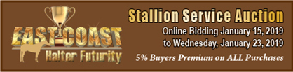 Bidding Open For 3 Stallion Service Auctions in January