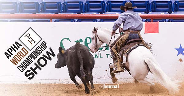 Qualification Procedure For Reining, Cutting, Cow Horse Classes For 2019 APHA World