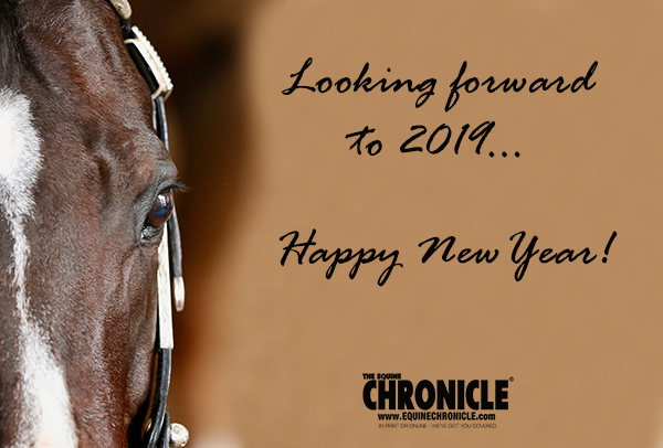 Happy New Year! From The Equine Chronicle