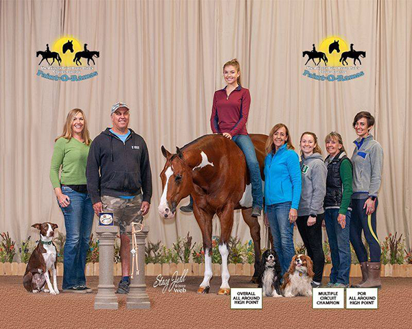 Copper Country POR Wraps Up 6 Days of Horse Showing- Click Here For Results and Photos!