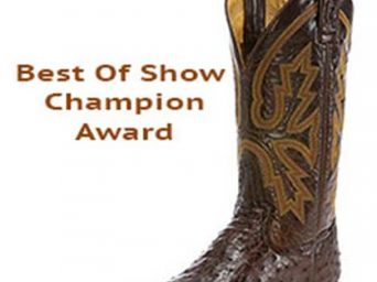 Saddles, Boots, Trophies, Buckles, and More Coming to 2019 AZ Sun Circuit