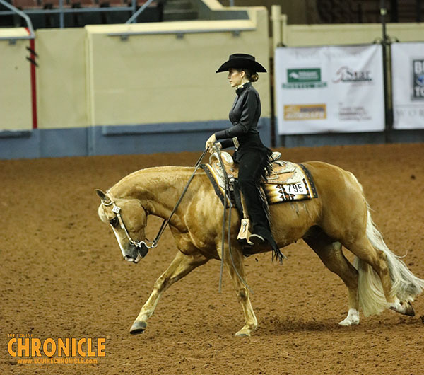 What Rule Changes are up For Consideration at the AQHA Convention?