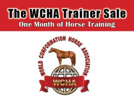 2019 WCHA Trainers' Sale Closes Tonight