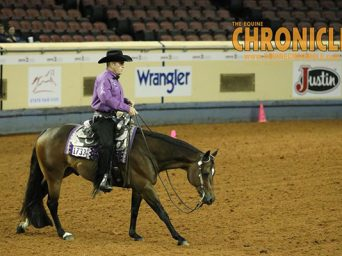 Congratulations 2018 AQHA Year-End Show Leaders and All-Around Winners!