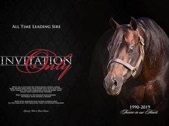 The Great AQHA Sire, Invitation Only, Has Passed at Age 29