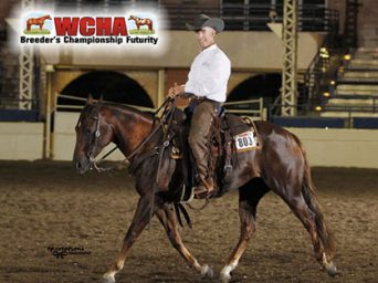 WCHA Offers All Breed Versatility Competition; Entries Open