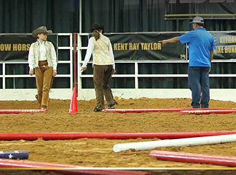 Perfecting Pole Work for the Young or Green Horse