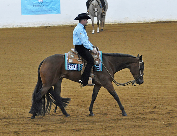 Around the Rings- Virginia Maiden 3-Year-Old and Over Western Pleasure