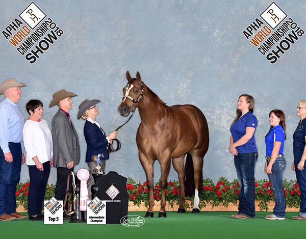 2 March Horse Internet Auctions Combined