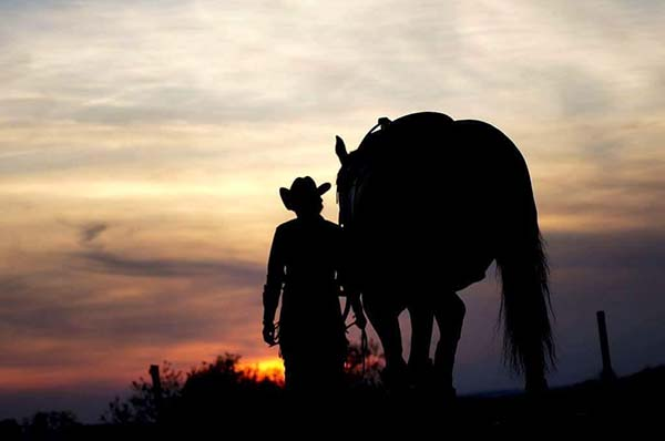 AQHA Incentive Fund Doles out Final Payout- $2.6 Million