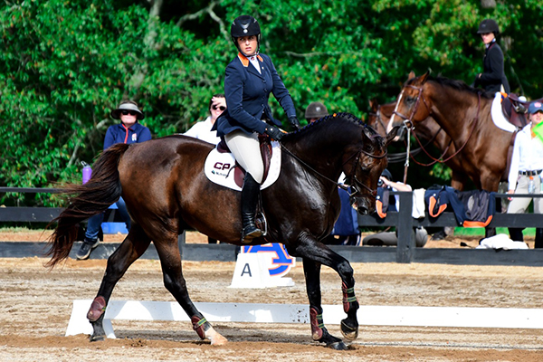 Everything You Need to Know About the NCEA National Championship