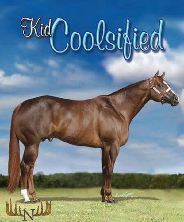 In Loving Memory of Kid Coolsified (2000-2019)