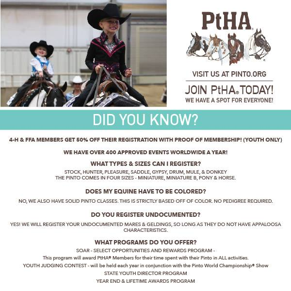 FAQ's About Pinto Horse Registration
