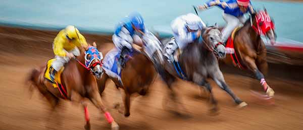AQHA Adresses Reforms in Horse Racing Industry