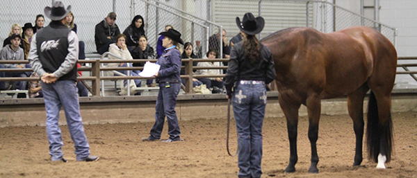 AQHA Central Level 1 Championships Ride The Pattern Clinics