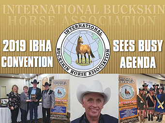2019 IBHA Convention Sees Busy Agenda
