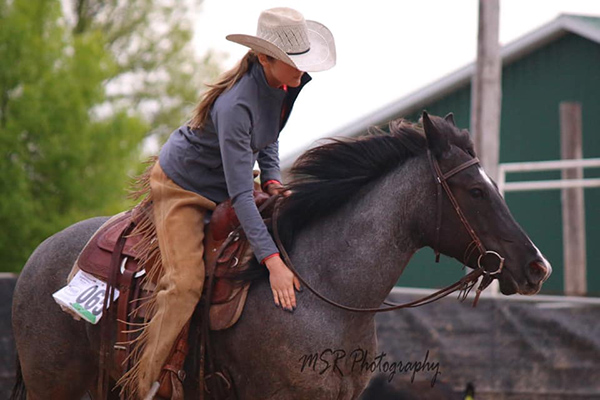 Show Your Own Horse- Cutting Competitor Defends Western Pleasure