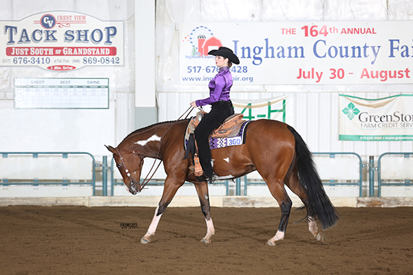 Photos and Results From Michigan Paint Horse Memorial Bonanza