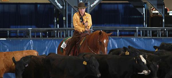AQHA Ranch Rule Changes Effective Jan. 1st, 2020