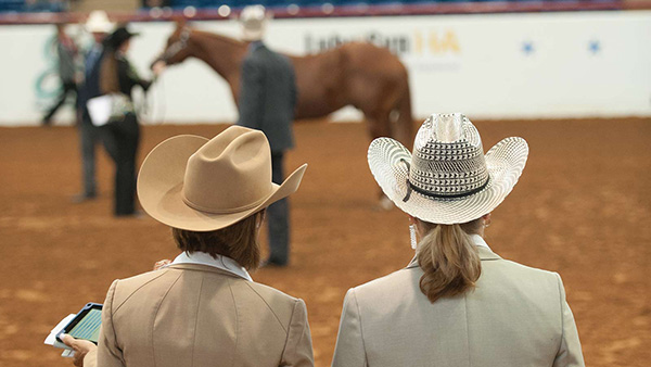 Congratulations APHA's Newly Approved Judges!