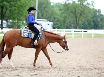 IQHA State Show Wraps up Eight Days in Indiana