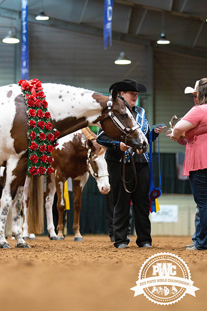 Save The Date For 2020 Pinto World Show