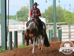 Around the Ring Photos and Results- June 14-16- Pinto World Show