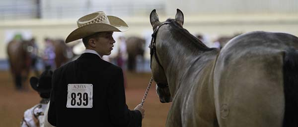 Reminder- AQHA Youth World Performance Halter Changes