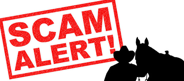 SCAM Alert: Affecting The Celebration and Western States Championship