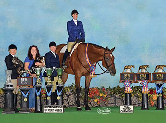 Couture Blue Genes – NSBA Horse of the Year