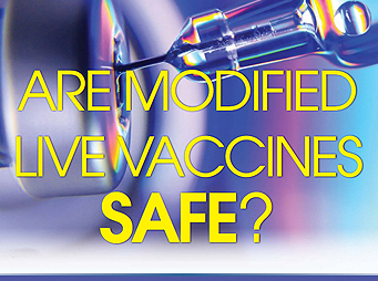 Are Modified Live Vaccines Safe?