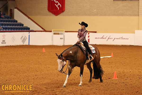 EC Video- 2019 APHA Youth World- 18 and Under Trail and Horsemanship