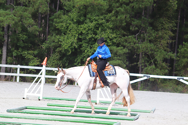 Results From Palmetto Paint Horse Club Summer Sizzler