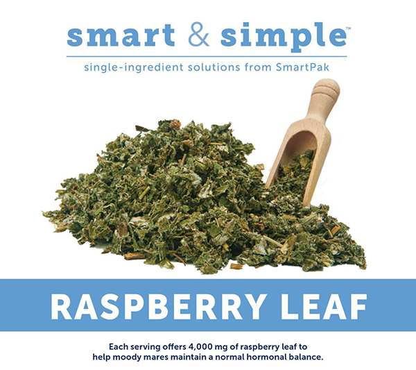Solution For Moody Mares- Smart and Simple Raspberry Leaf