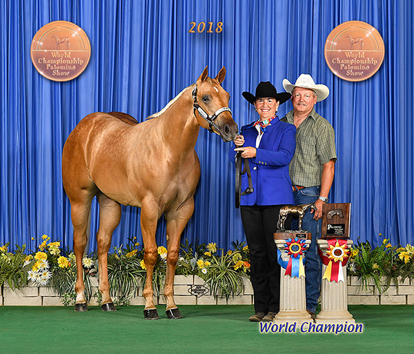 Internet Catalogs Available for 2 August Horse Auctions