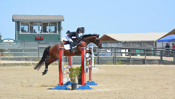 Returning to High Level Competition After Colic Surgery